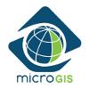 microgis-logo-p3-col_100px